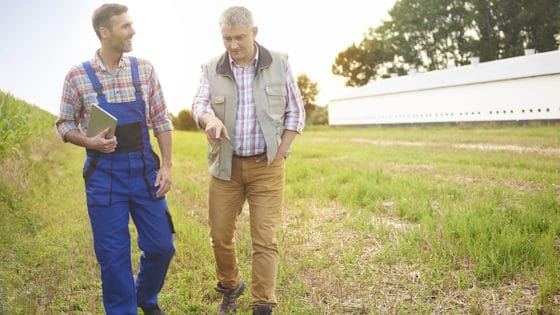 Yield Farming: granjeros ya no cultivan papas, sino intereses en plataformas DeFi