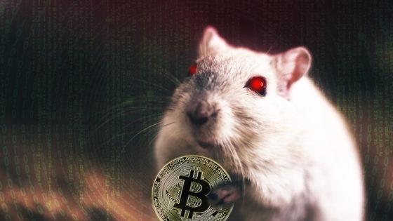 Malware sustrae llaves de monederos de bitcoin usando aplicaciones falsas