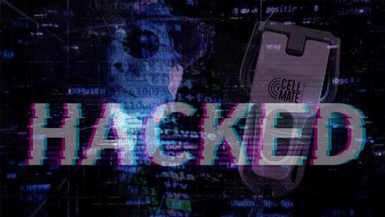 Hackers bloquean juguete sexual electrónico durante su uso para pedir «rescate» en bitcoin