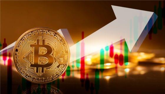 Con 8 mil dólares de aumento, el precio de bitcoin vive el día más ganador de su historia