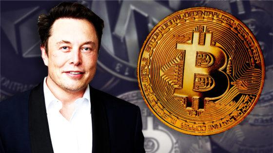 Elon Musk afirma que es partidario de bitcoin ¿ahora dónde queda Dogecoin?