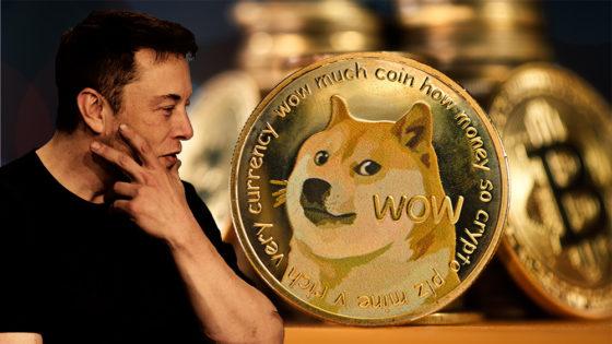 Elon Musk vuelve a declarar su apoyo a Dogecoin y elimina a bitcoin de su Twitter
