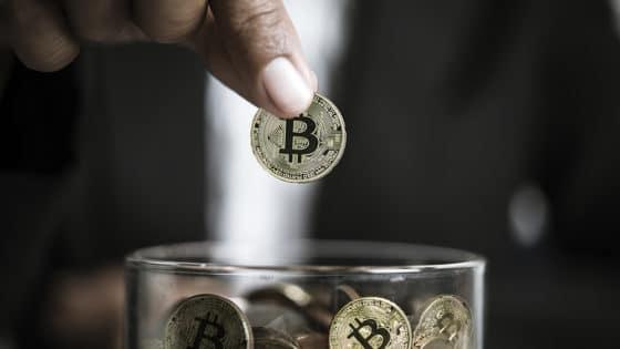 Wasabi y Bull Bitcoin donaron USD 36.000 a desarrollador de Bitcoin Knots