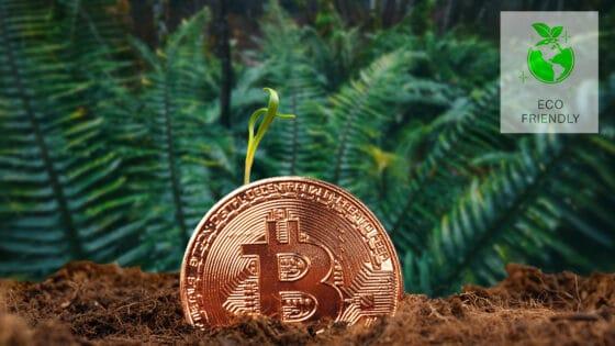 Minería de bitcoin no representa una amenaza para el medio ambiente, revela estudio