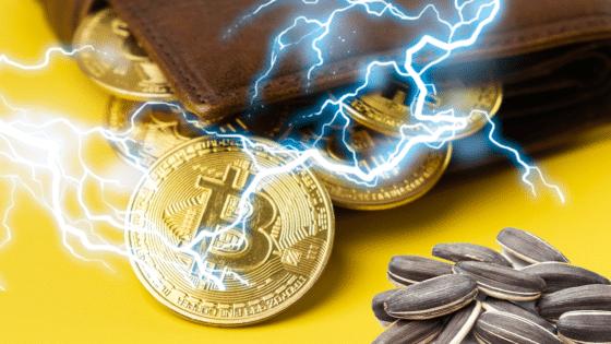 ¿Por qué es tan difícil tener respaldo de los canales de pago de Bitcoin? Experto responde